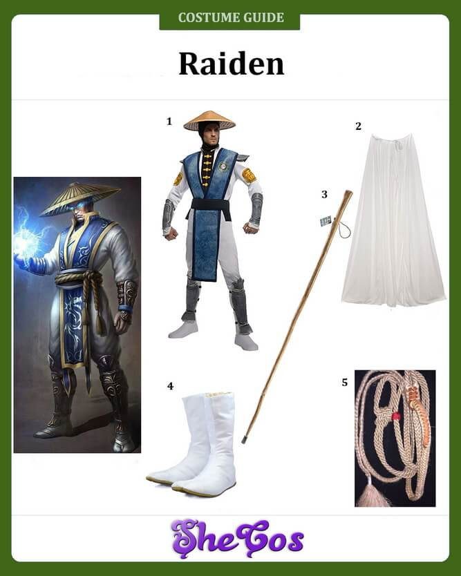 raiden costume diy